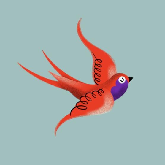 Illustration Flying Bird